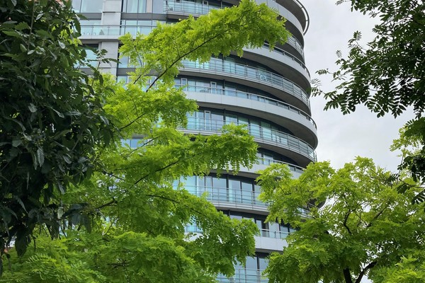 Self-guided Architecture Walk - Putney High Street to the River Wandle