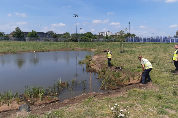 Volunteers planting the wetlands