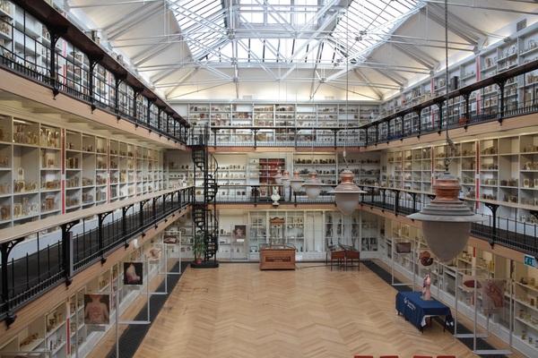 Pathology Museum interior