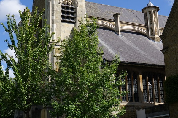5. St Peter's Church
