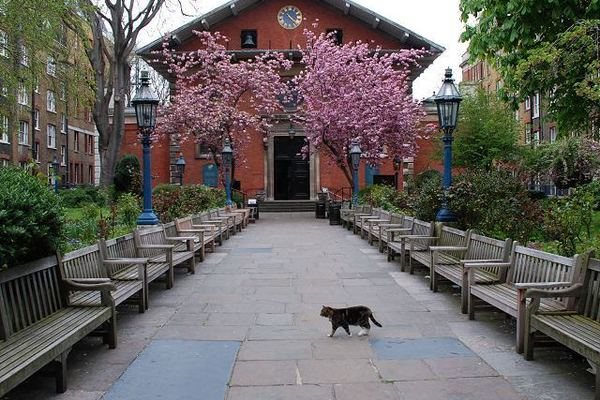 St Paul's Churchyard, Covent Garden