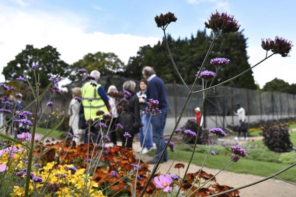 A tour of the gardens