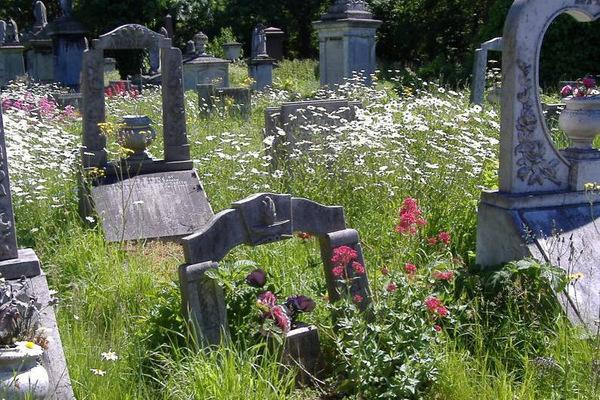 Lodge Graves