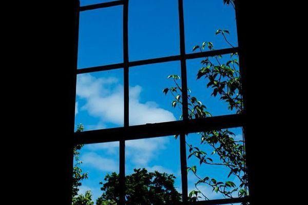 Meeting Room window from inside