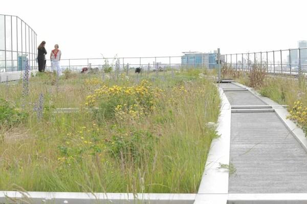 201 Bishopsgate Green Rooftop