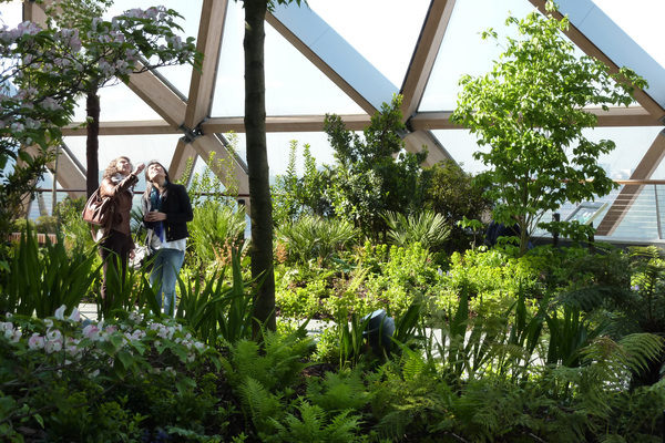 Visitors admire the Cornus florida (flowering dog wood) and the planting in the west end of the garden