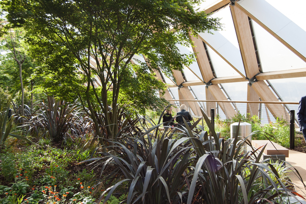 The garden provides a secluded space for meetings
