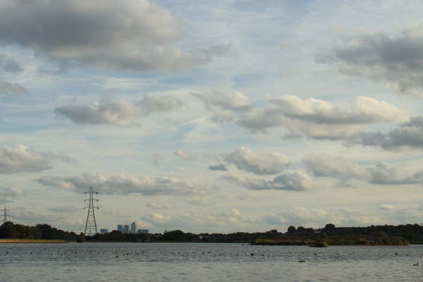 Walthamstow Wetlands, 15 minutes from Central London