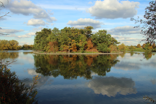 10 reservoirs at Walthamstow Wetlands