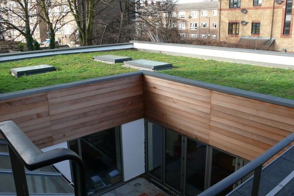 Sedum Roof and Courtyard
