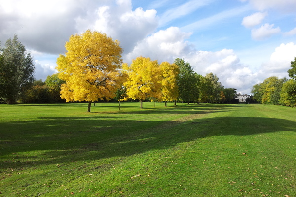 View along the Camber in Canons Park