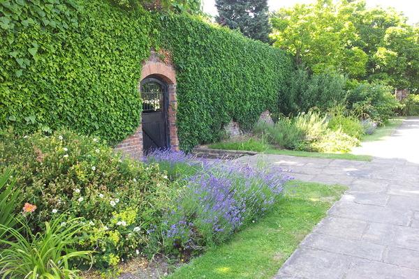 The George V Memorial Garden