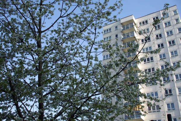 Harlech Tower (1968-71)