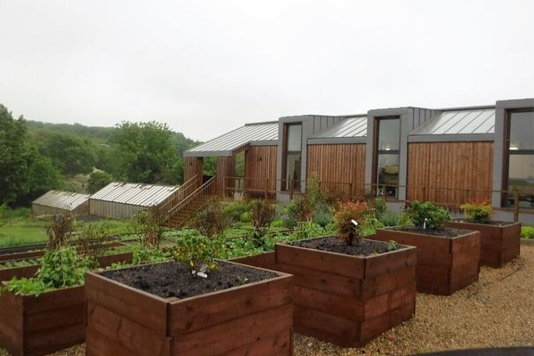 building and raised beds