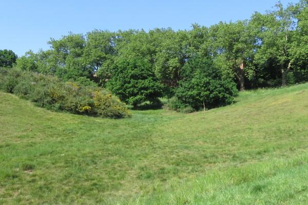 Martin's Hill - Bertie's playground