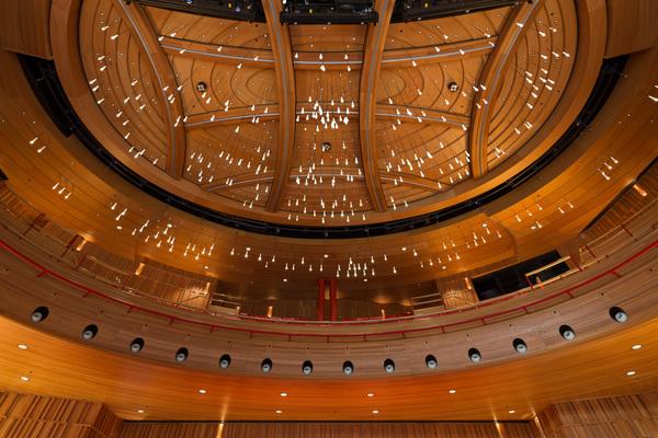 Susie Sainsbury Theatre - Ceiling