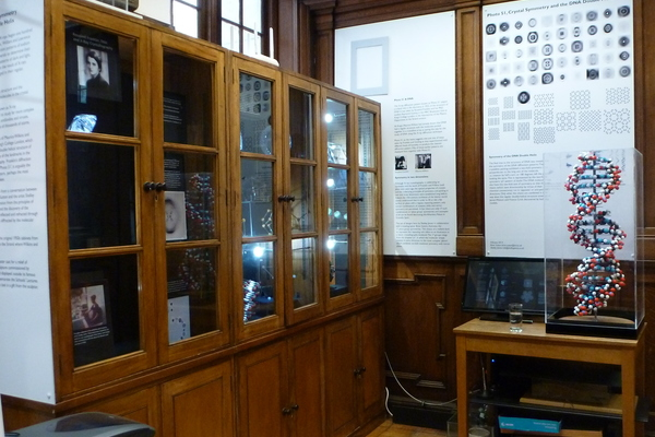 Cupboards from the laboratory of Professor Maurice Wilkins, joint nobel laureate for his work on the structure of DNA