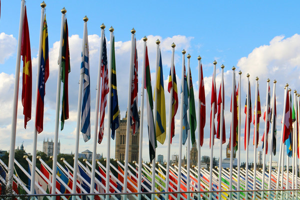 Member States' flags are flown on special occasions