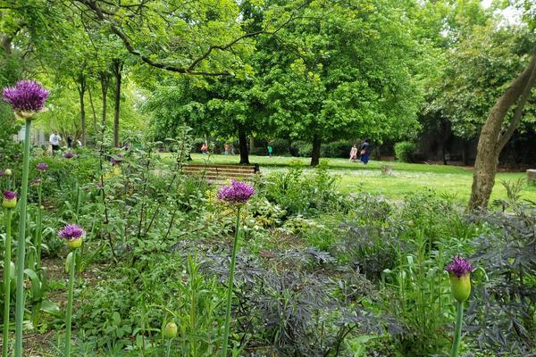 Luxmore Gardens planting