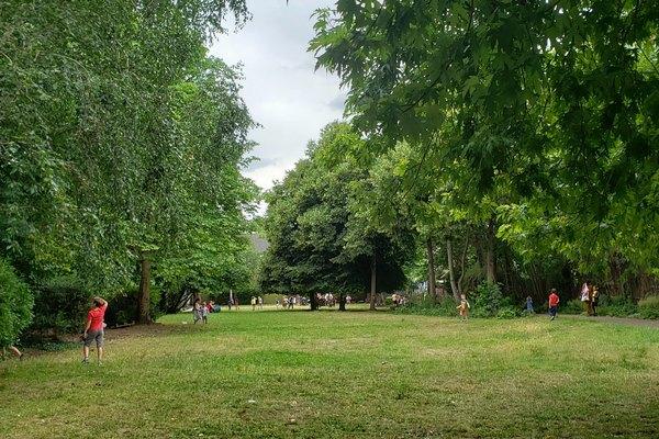Luxmore Gardens trees