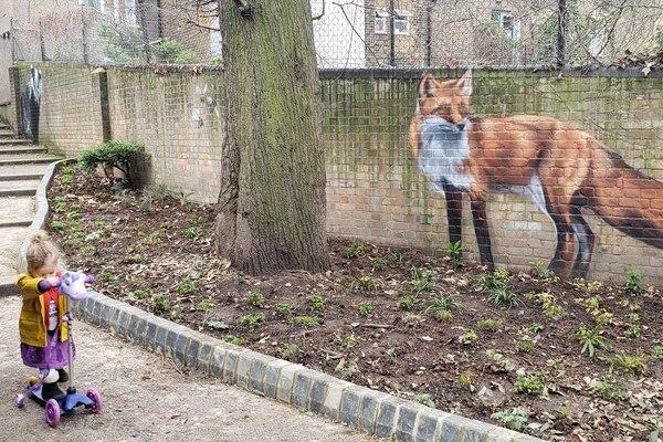 Aspire fox mural