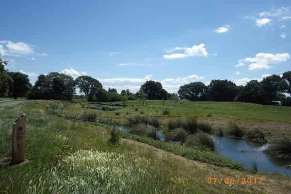 Moore Brook channel, Firs Farm Wetlands