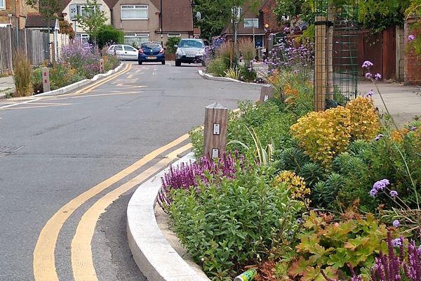 Hazelbury School Rain Garden