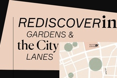 Rediscovering the City: gardens and lanes